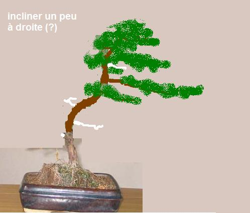 http://www.espritsdegoshin.fr/components/com_agora/img/members/14730_img_2213_213.jpeg