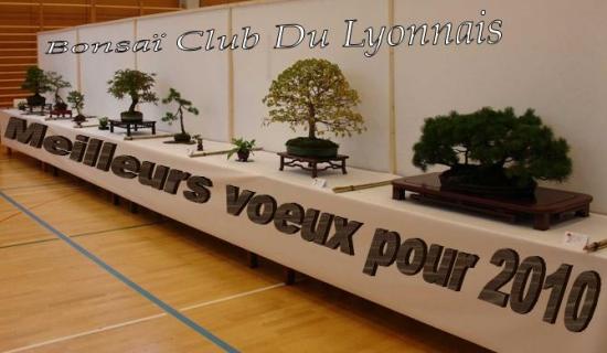 http://www.espritsdegoshin.fr/components/com_agora/img/members/1603/mini_Voeux2010-BCL.jpg