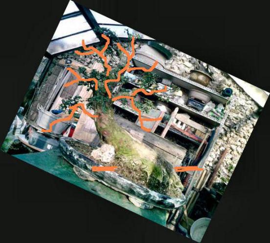 http://www.espritsdegoshin.fr/components/com_agora/img/members/16295_image2n_173.jpg