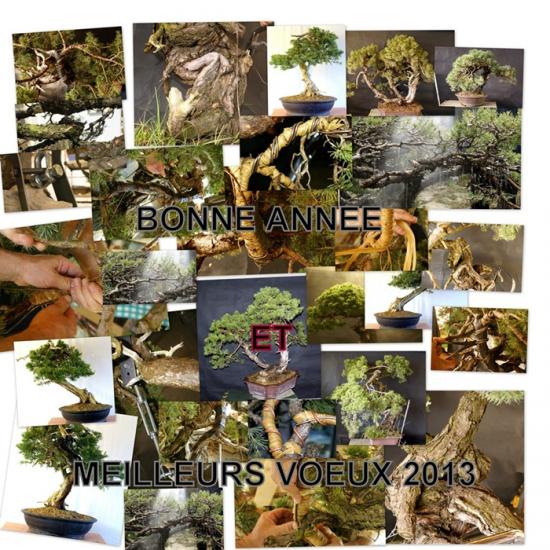 http://www.espritsdegoshin.fr/components/com_agora/img/members/1729/mini_VOEUX-2013.jpg