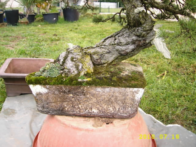 http://www.espritsdegoshin.fr/components/com_agora/img/members/1856/22032010-1724_DSCI0008.JPG