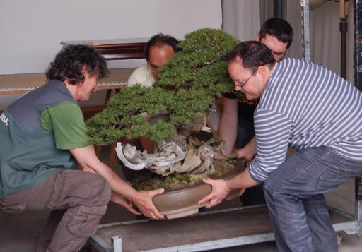 http://www.espritsdegoshin.fr/components/com_agora/img/members/1958/04042011-2142_13.jpg