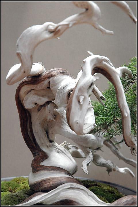 http://www.espritsdegoshin.fr/components/com_agora/img/members/1958/29062011-2013_2.jpg