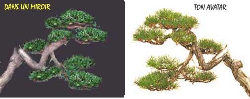 http://www.espritsdegoshin.fr/components/com_agora/img/members/20088_sans_titre-2.jpg