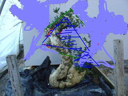 http://www.espritsdegoshin.fr/components/com_agora/img/members/2011/projet-dr-sylvestre.JPG