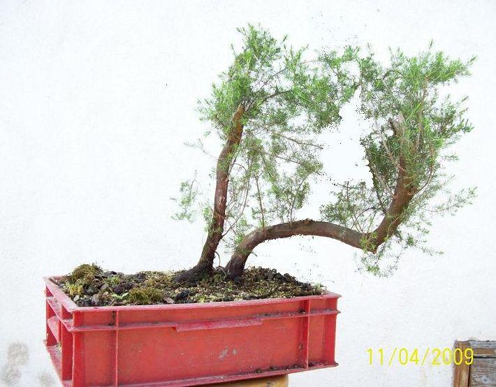 http://www.espritsdegoshin.fr/components/com_agora/img/members/2012/2009-b-a.JPG