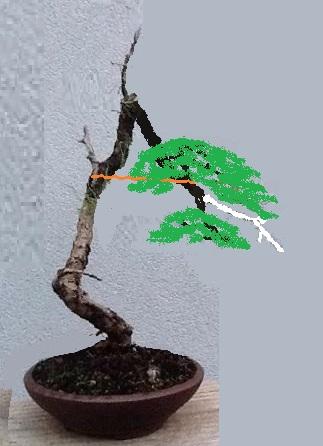 http://www.espritsdegoshin.fr/components/com_agora/img/members/2032/-0613-1705-image.jpg