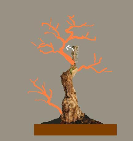 http://www.espritsdegoshin.fr/components/com_agora/img/members/2032/15022011-2011-FACE2.jpg