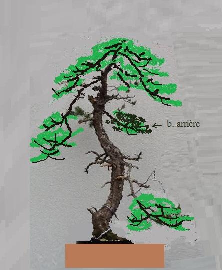 http://www.espritsdegoshin.fr/components/com_agora/img/members/2032/mini-14052013-185-image.jpg
