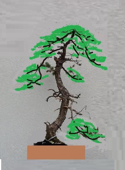 http://www.espritsdegoshin.fr/components/com_agora/img/members/2032/mini-14052013-1859-image.jpg
