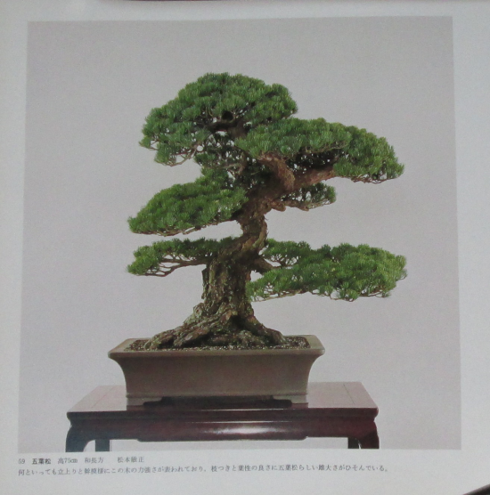 http://www.espritsdegoshin.fr/components/com_agora/img/members/2032/mini_22082019-0114_sakufu-ten-2---1977-67.JPG