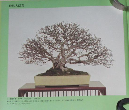 http://www.espritsdegoshin.fr/components/com_agora/img/members/2032/mini_sakufu-ten-2---1977-11.JPG