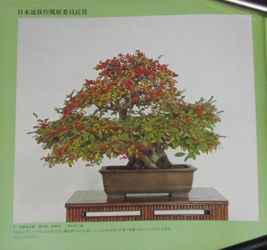 http://www.espritsdegoshin.fr/components/com_agora/img/members/2032/mini_sakufu-ten-2---1977-13.JPG