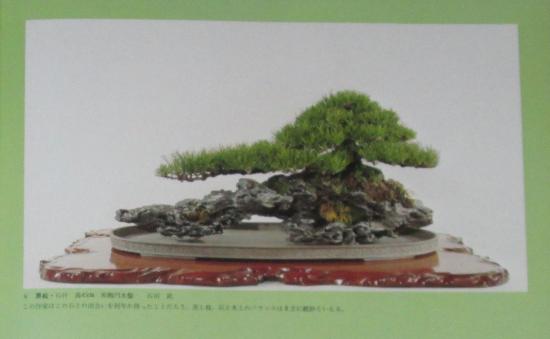 http://www.espritsdegoshin.fr/components/com_agora/img/members/2032/mini_sakufu-ten-2---1977-14.JPG