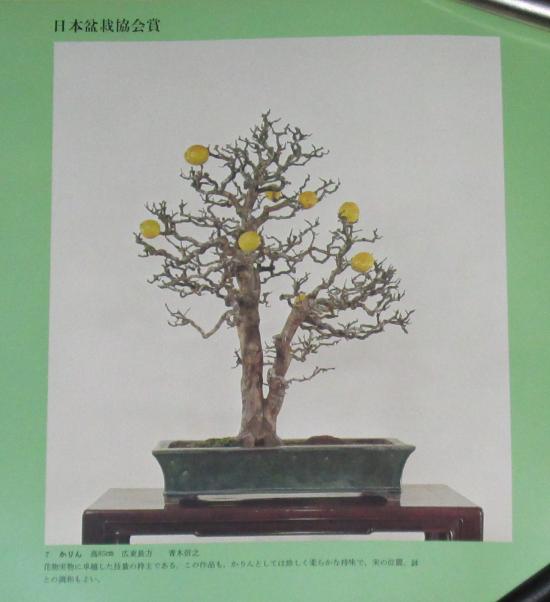 http://www.espritsdegoshin.fr/components/com_agora/img/members/2032/mini_sakufu-ten-2---1977-15.JPG
