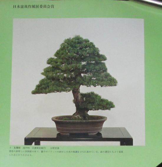 http://www.espritsdegoshin.fr/components/com_agora/img/members/2032/mini_sakufu-ten-2---1977-17.JPG