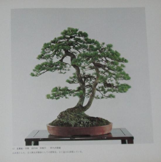 http://www.espritsdegoshin.fr/components/com_agora/img/members/2032/mini_sakufu-ten-2---1977-20.JPG