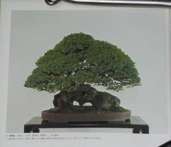 http://www.espritsdegoshin.fr/components/com_agora/img/members/2032/mini_sakufu-ten-2---1977-21.JPG