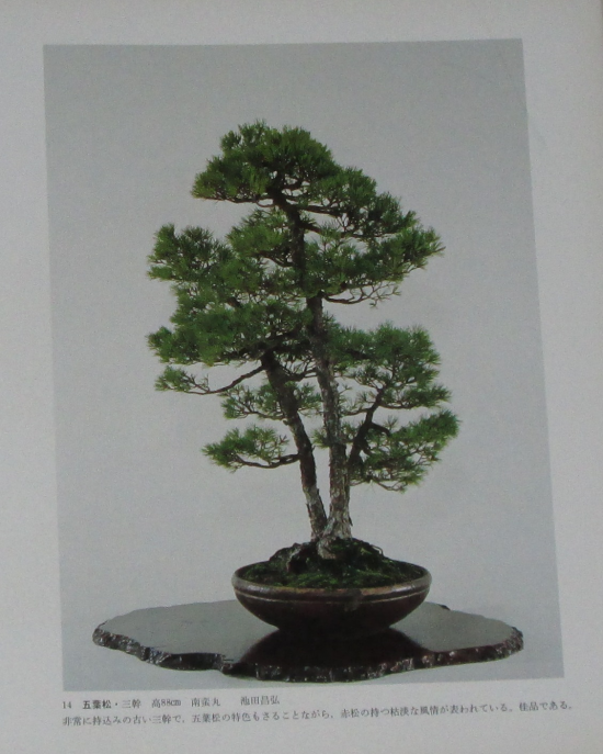 http://www.espritsdegoshin.fr/components/com_agora/img/members/2032/mini_sakufu-ten-2---1977-22.JPG
