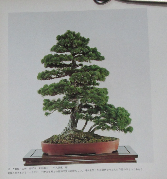 http://www.espritsdegoshin.fr/components/com_agora/img/members/2032/mini_sakufu-ten-2---1977-23.JPG