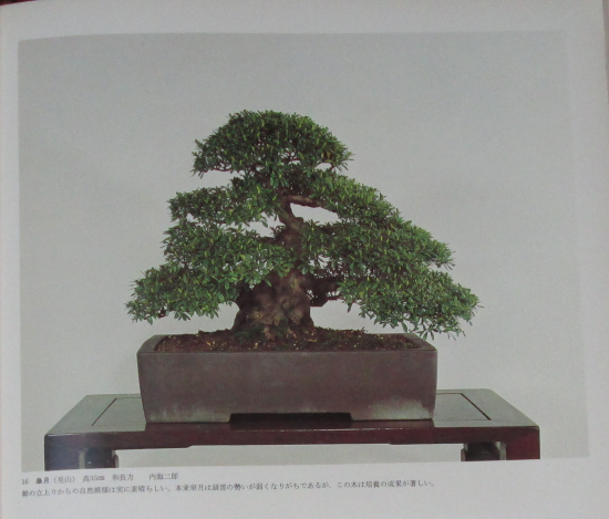 http://www.espritsdegoshin.fr/components/com_agora/img/members/2032/mini_sakufu-ten-2---1977-24.JPG