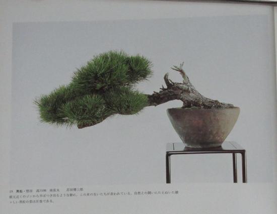 http://www.espritsdegoshin.fr/components/com_agora/img/members/2032/mini_sakufu-ten-2---1977-27.JPG