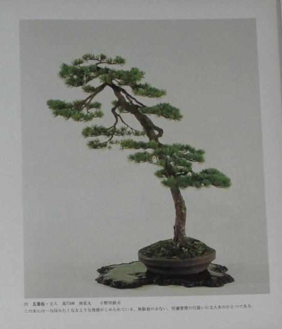 http://www.espritsdegoshin.fr/components/com_agora/img/members/2032/mini_sakufu-ten-2---1977-28.JPG