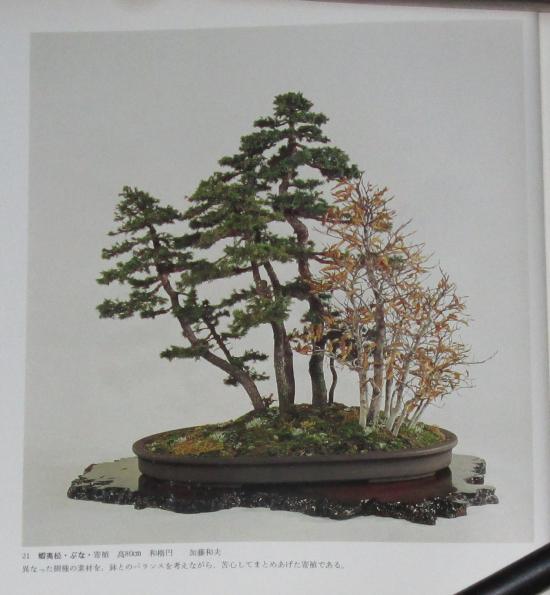 http://www.espritsdegoshin.fr/components/com_agora/img/members/2032/mini_sakufu-ten-2---1977-29.JPG