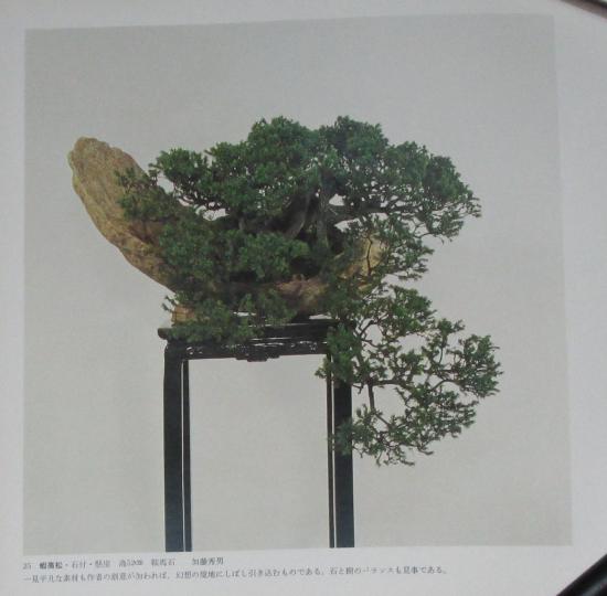 http://www.espritsdegoshin.fr/components/com_agora/img/members/2032/mini_sakufu-ten-2---1977-33.JPG