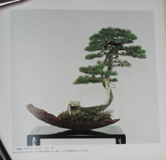 http://www.espritsdegoshin.fr/components/com_agora/img/members/2032/mini_sakufu-ten-2---1977-34.JPG