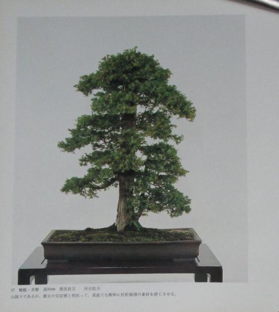 http://www.espritsdegoshin.fr/components/com_agora/img/members/2032/mini_sakufu-ten-2---1977-35.JPG