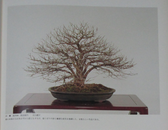 http://www.espritsdegoshin.fr/components/com_agora/img/members/2032/mini_sakufu-ten-2---1977-36.JPG
