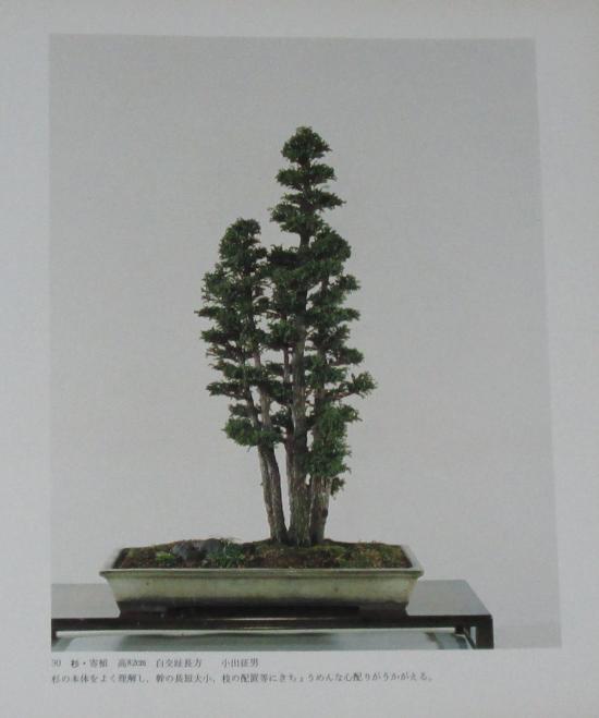 http://www.espritsdegoshin.fr/components/com_agora/img/members/2032/mini_sakufu-ten-2---1977-38.JPG