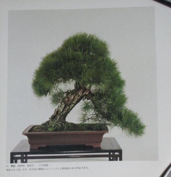 http://www.espritsdegoshin.fr/components/com_agora/img/members/2032/mini_sakufu-ten-2---1977-39.JPG