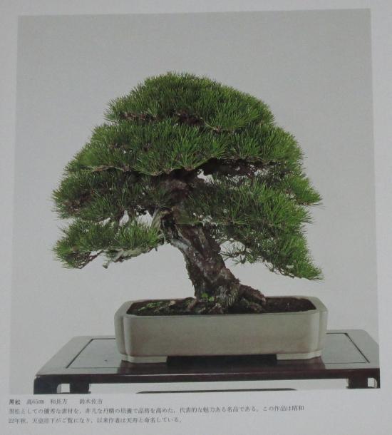 http://www.espritsdegoshin.fr/components/com_agora/img/members/2032/mini_sakufu-ten-2---1977-4.JPG