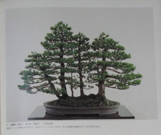 http://www.espritsdegoshin.fr/components/com_agora/img/members/2032/mini_sakufu-ten-2---1977-40.JPG
