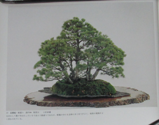 http://www.espritsdegoshin.fr/components/com_agora/img/members/2032/mini_sakufu-ten-2---1977-41.JPG
