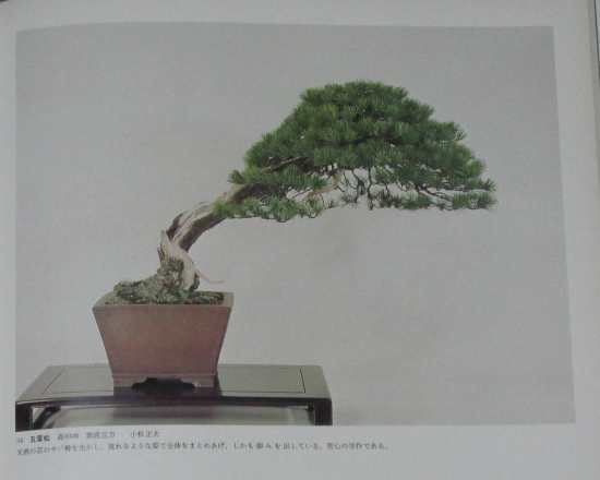 http://www.espritsdegoshin.fr/components/com_agora/img/members/2032/mini_sakufu-ten-2---1977-42.JPG