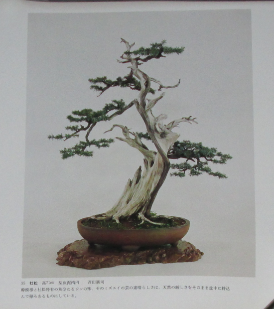 http://www.espritsdegoshin.fr/components/com_agora/img/members/2032/mini_sakufu-ten-2---1977-43.JPG