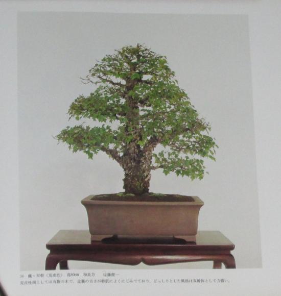http://www.espritsdegoshin.fr/components/com_agora/img/members/2032/mini_sakufu-ten-2---1977-44.JPG