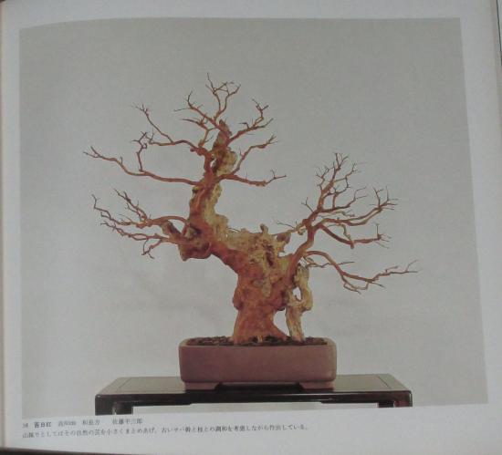 http://www.espritsdegoshin.fr/components/com_agora/img/members/2032/mini_sakufu-ten-2---1977-46.JPG