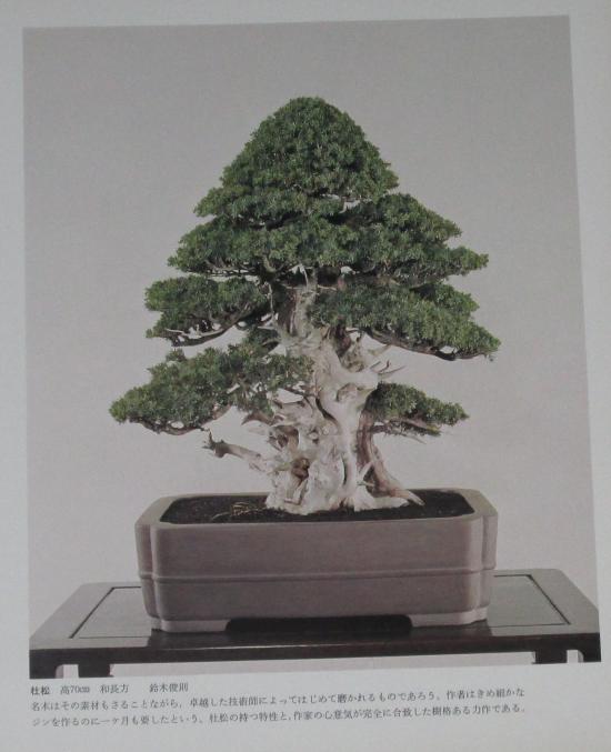 http://www.espritsdegoshin.fr/components/com_agora/img/members/2032/mini_sakufu-ten-2---1977-5.JPG