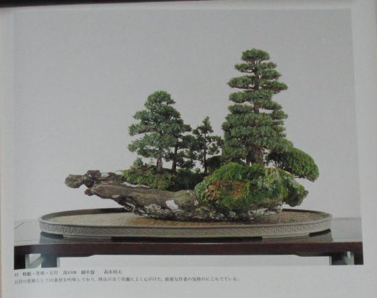 http://www.espritsdegoshin.fr/components/com_agora/img/members/2032/mini_sakufu-ten-2---1977-50.JPG