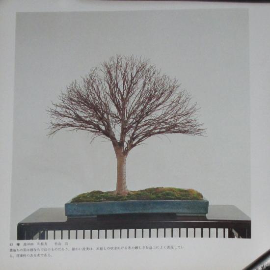http://www.espritsdegoshin.fr/components/com_agora/img/members/2032/mini_sakufu-ten-2---1977-51.JPG