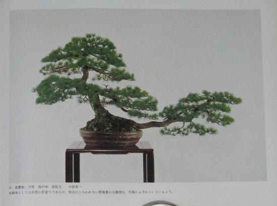 http://www.espritsdegoshin.fr/components/com_agora/img/members/2032/mini_sakufu-ten-2---1977-54.JPG