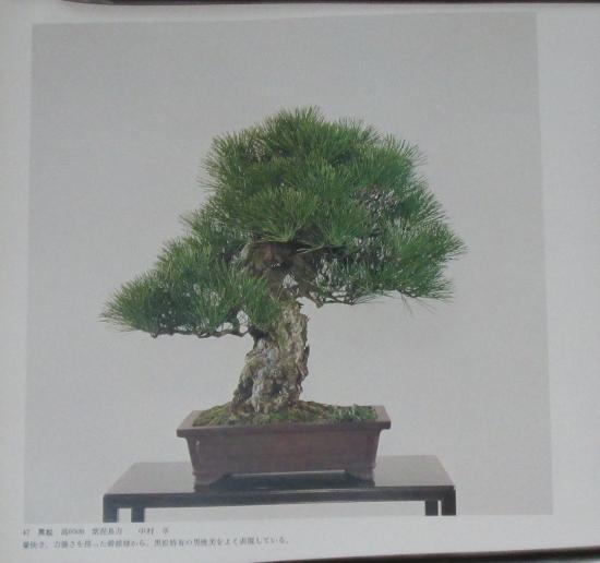 http://www.espritsdegoshin.fr/components/com_agora/img/members/2032/mini_sakufu-ten-2---1977-55.JPG