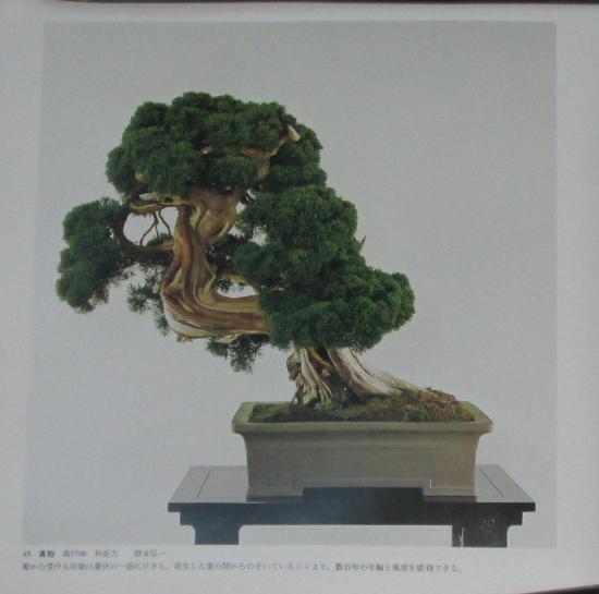 http://www.espritsdegoshin.fr/components/com_agora/img/members/2032/mini_sakufu-ten-2---1977-57.JPG