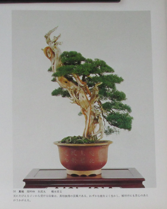 http://www.espritsdegoshin.fr/components/com_agora/img/members/2032/mini_sakufu-ten-2---1977-58.JPG