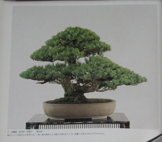 http://www.espritsdegoshin.fr/components/com_agora/img/members/2032/mini_sakufu-ten-2---1977-59.JPG