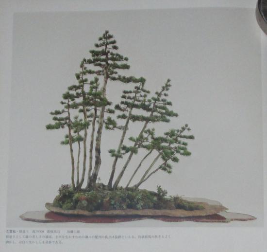 http://www.espritsdegoshin.fr/components/com_agora/img/members/2032/mini_sakufu-ten-2---1977-6.JPG